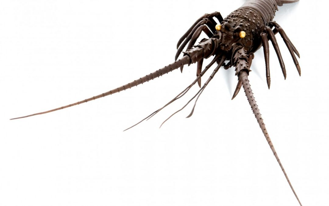 Articulated spiny lobster